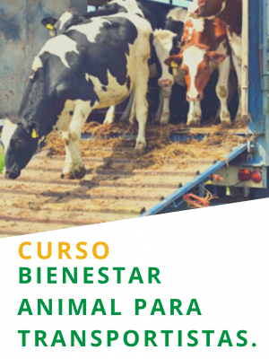 Bienestar Animal para Transportistas