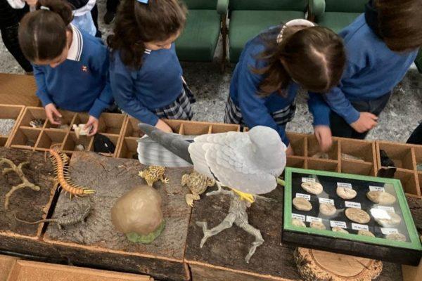 Programa de Educación Medioambiental